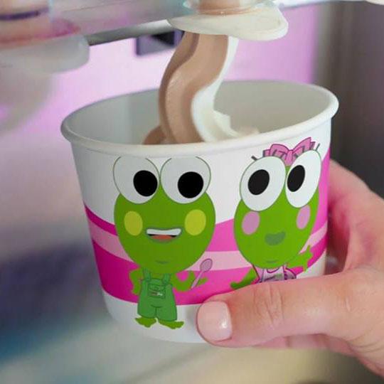 SweetFrog cup and Frozen Yogurt
